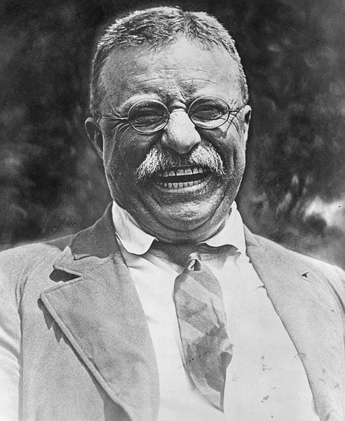 Teddy Roosevelt (Wikipedia)