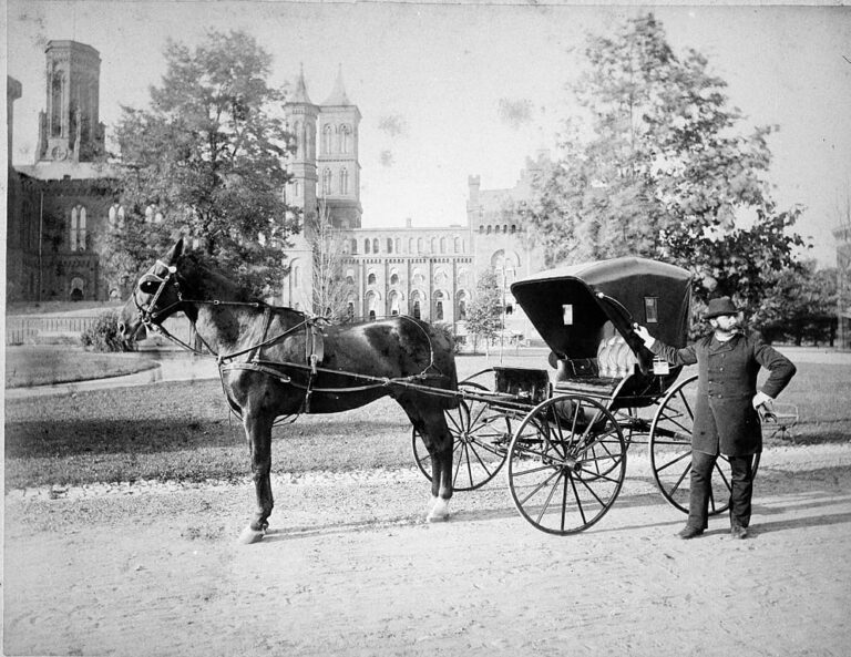 Daniel H. Riggs, Howard University Medicine, in the South Yard of the Smithsonian Institution Building, stands next to his carriage. Picture shows the East Wing after Adolph Cluss' 1884 renovation. Against the building are sheds, used by the Department of Living Animals, 1887-1890 (Smithsonian Archives)