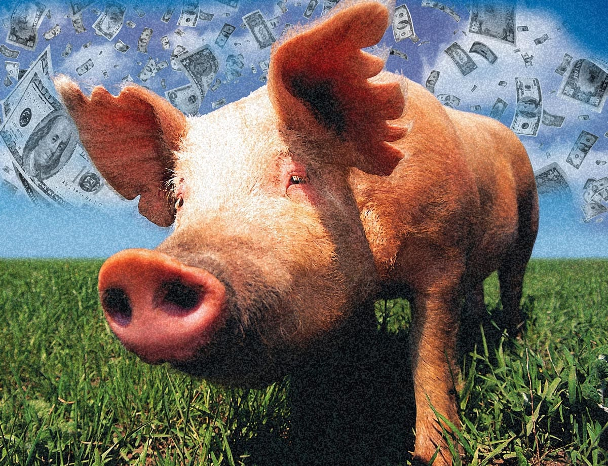 The Changing Fortunes of Pork in the District