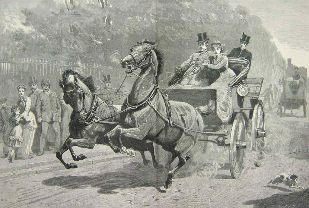 Runaway horse and carriage