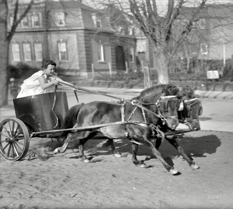 """Washington, D.C., circa 1917. """"Devereux child in chariot."""" Late for the toga party. Harris & Ewing Collection glass negative. (Shorpy)"""