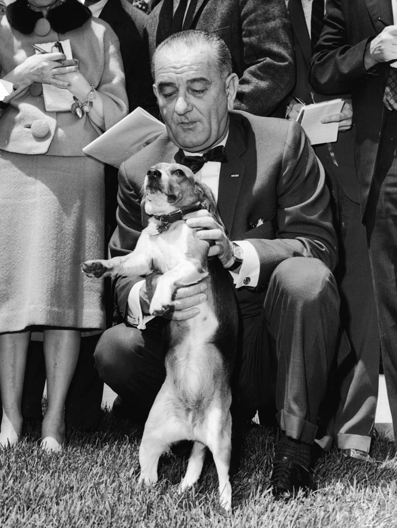 LBJ Kneeling With Pet Beagle 'Him'