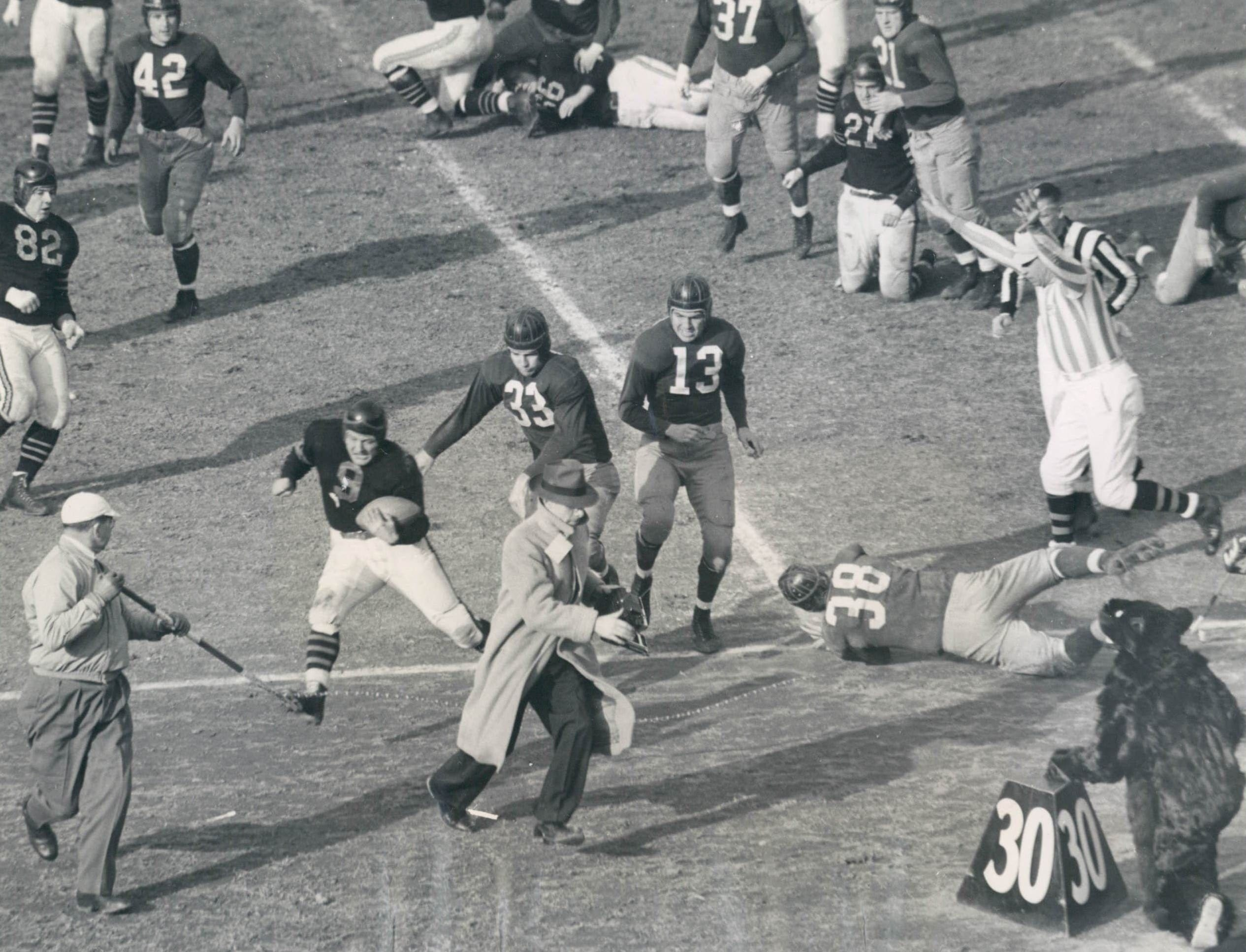 Sideline operatives camper as Bear goes out. Big Bill Osmanski, Chicago Bear Fullback, drove out of bounds on this play and sent a cameraman, lineman and the team's mascot scampering. Redskins, Sammy Baugh (No. 33) and Ed Justice (No. 13) was close behind Osmanski. Associated Press photo