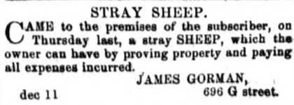 notice of stray sheep - December 14th, 1860 (National Republican)