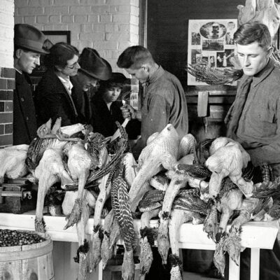 Thanksgiving in Park View (1924)