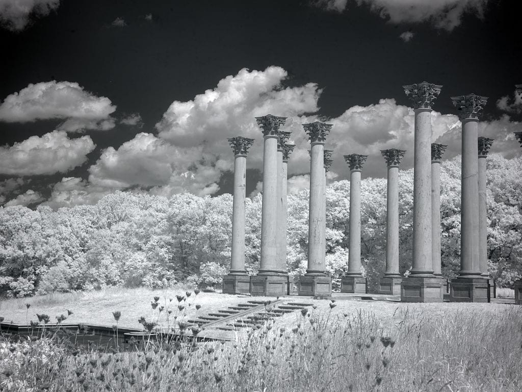 old Capitol columns at the National Arboretum (Library of Congress)
