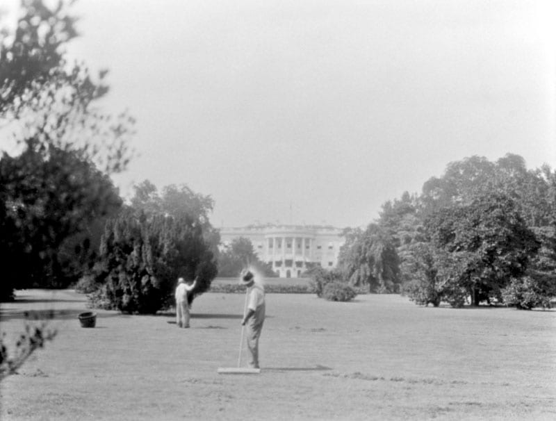 gardeners sweeping the White House lawn