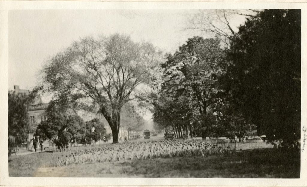 Farragut Square in 1919