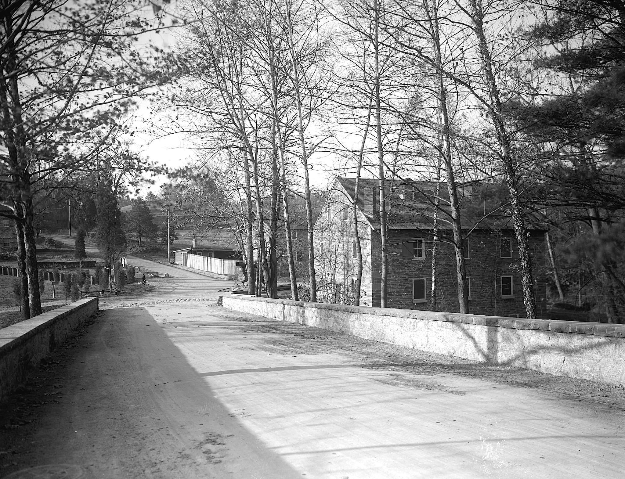 scenes from Rock Creek Park