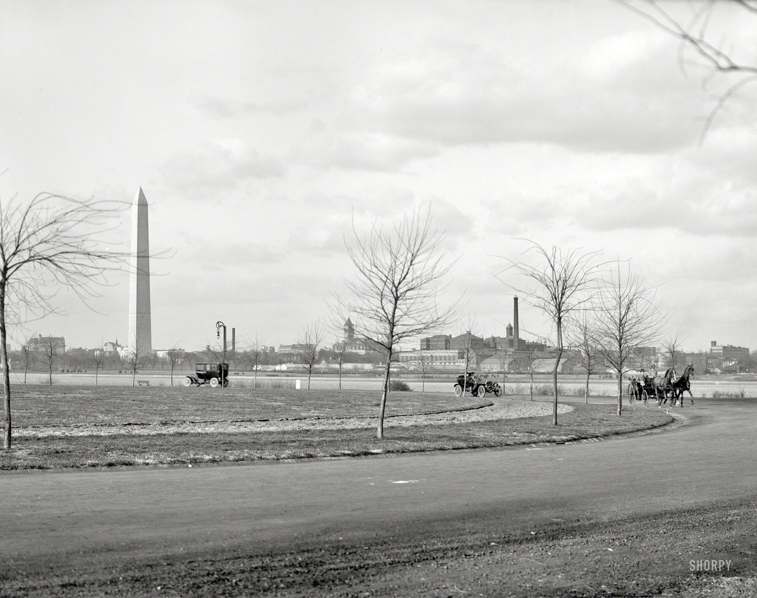 Great Black and White of Potomac Park in 1908