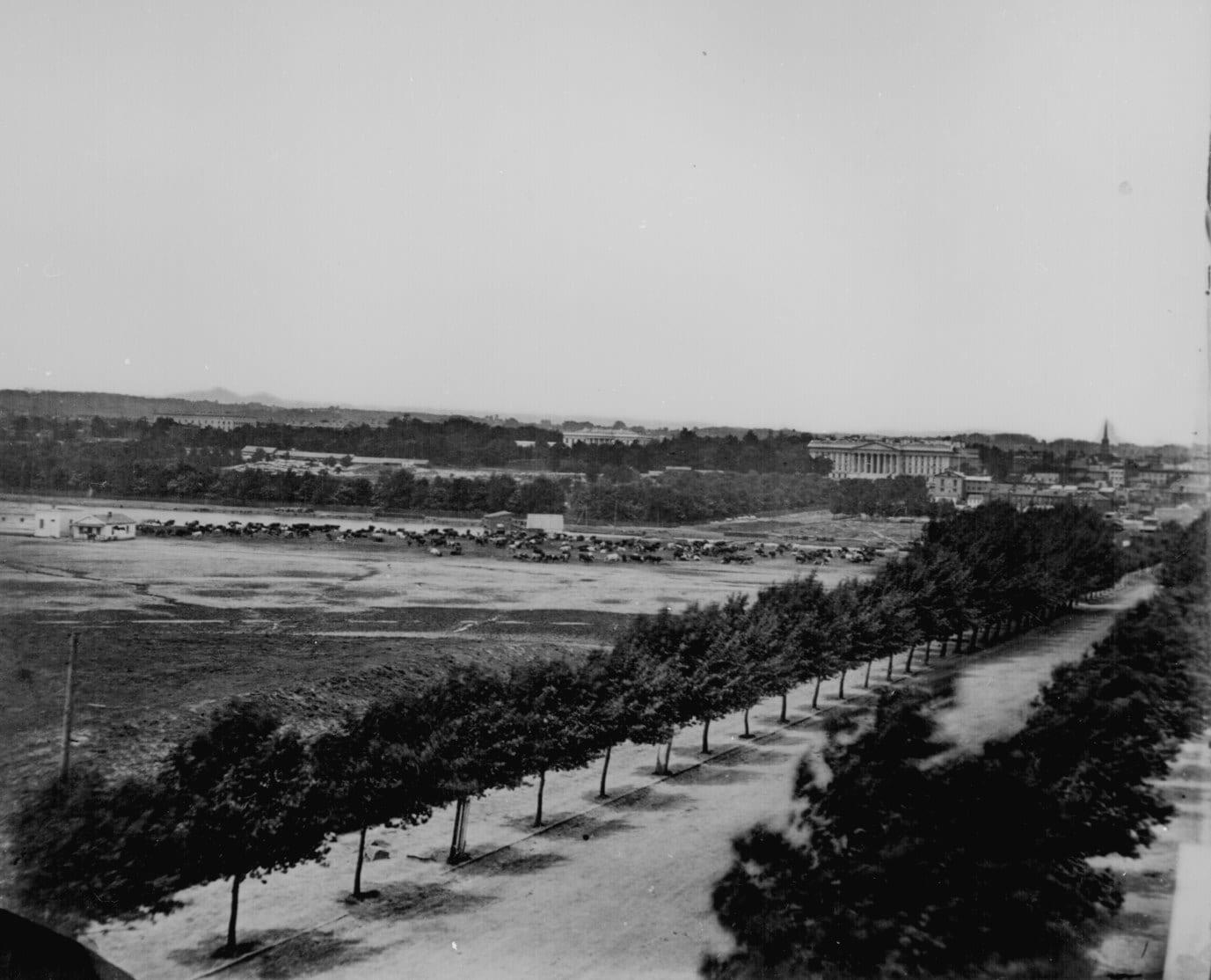 General view of the city from the south toward the Treasury Building and the White House. Cows are grazing near Tiber Creek.