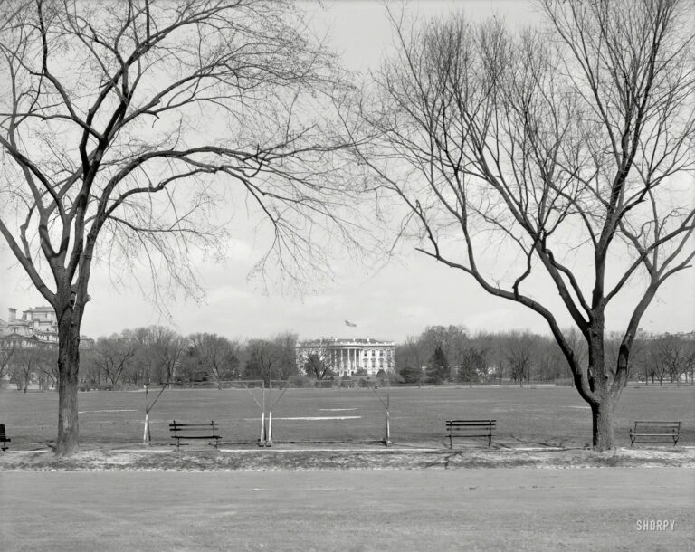 "Washington circa 1910. ""Glimpse of White House from Monument Green."" 8x10 inch glass negative, Detroit Publishing Company."