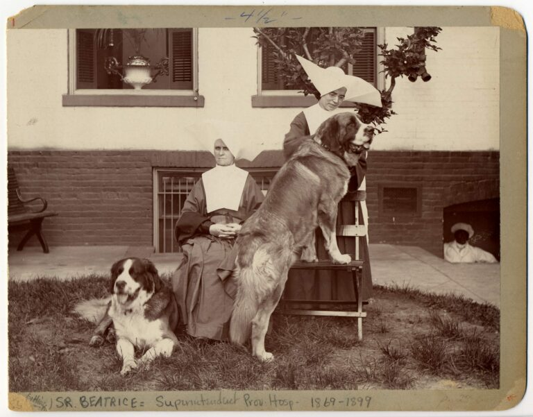 Sister Beatrice, Superintendant of Providence Hospital in garden with another nun and St. Bernard dogs. c.1890. General Photograph Collection, HSW