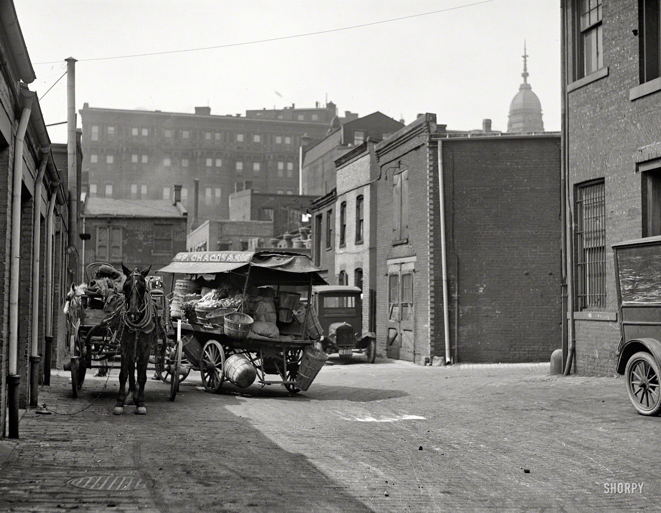 "Produce wagon in city, 1923."" One in a series of Harris & Ewing plates showing the alleys and backstreets of Washington, D.C. The subject here is a Chaconas grocery wagon."