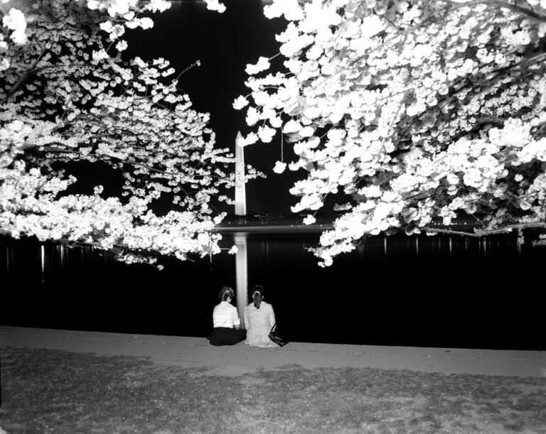 Two girls view the cherry blossoms at night from the Tidal Basin, undated, Scurlock Studio. Scurlock Studio Records, c. 1905-1994, Archives Center, National Museum of American History. Neg. no. 2008-4935.